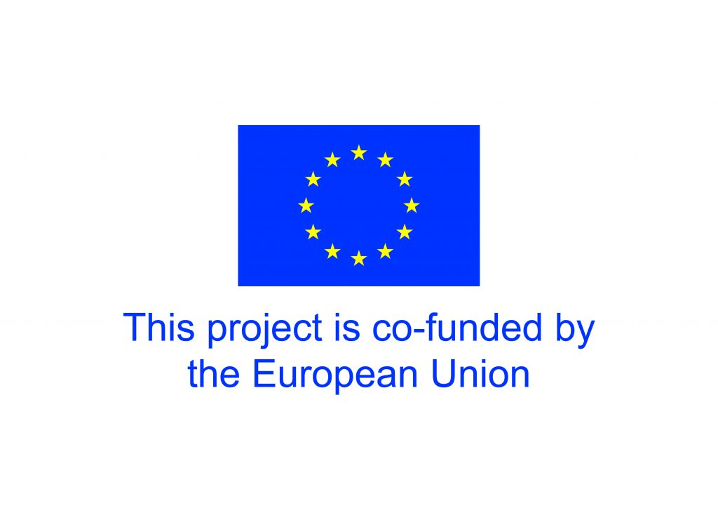 This image has an empty alt attribute; its file name is EU-emblem-cofunded-down-1024x724.jpg